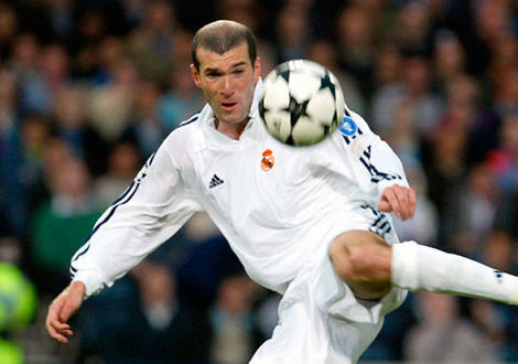 Medium extra large zizou